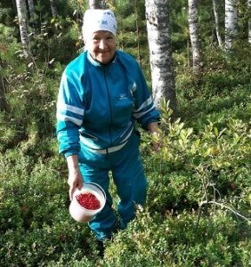 штраф за сбор грибов и ягод