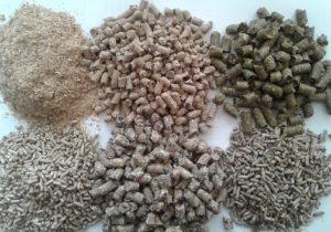 Комбикорм из биомассы - реальная перспектива для животноводства
