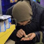 Продуктовые карточки для малоимущих в России не введут.